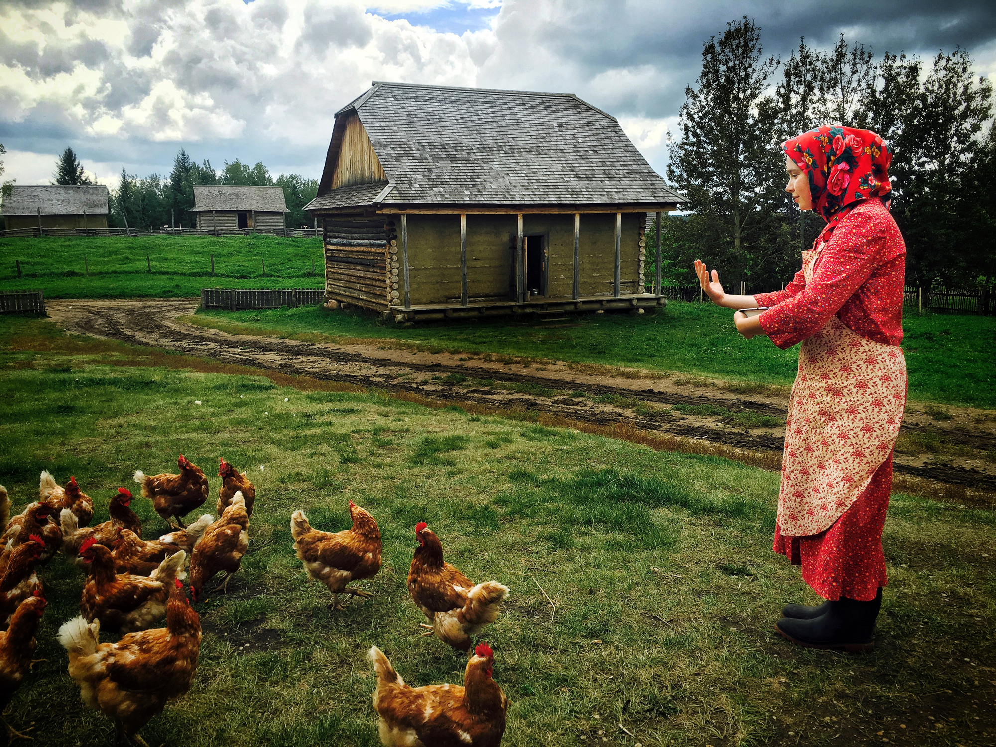 Young woman in traditional Ukrainian attire feeds chickens
